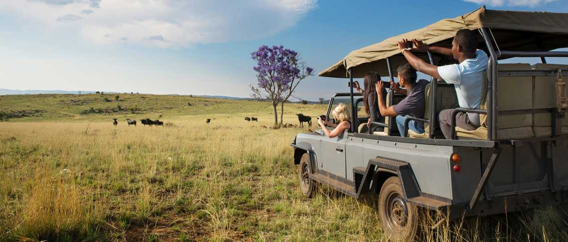 African Explorer - Chisomo Safari Camp