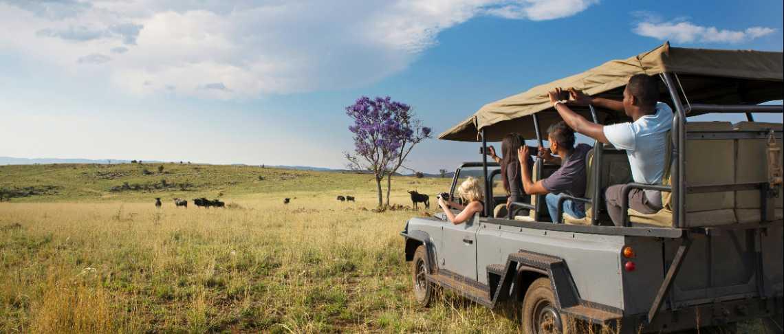 libero sud africano single dating